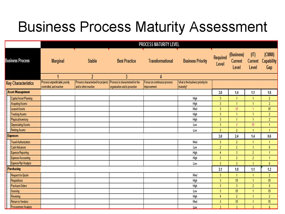 ERP Business Process Maturity Level (CMMI)