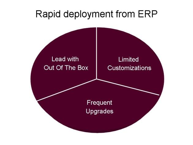 Strategies for Rapid Delivery via ERP