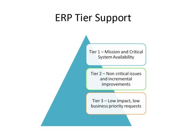ERP System Support Model